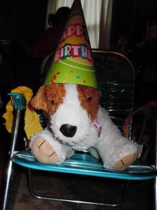 The Birthday Dog in the Birthday Chair