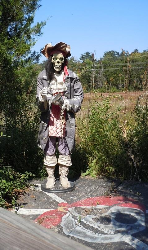 Creepy Pirate Statue