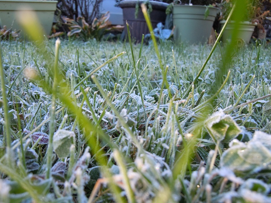 FirstFrost2015