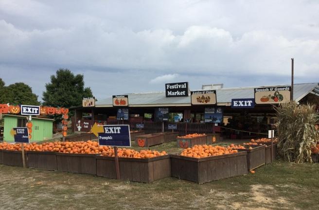Festival - Market